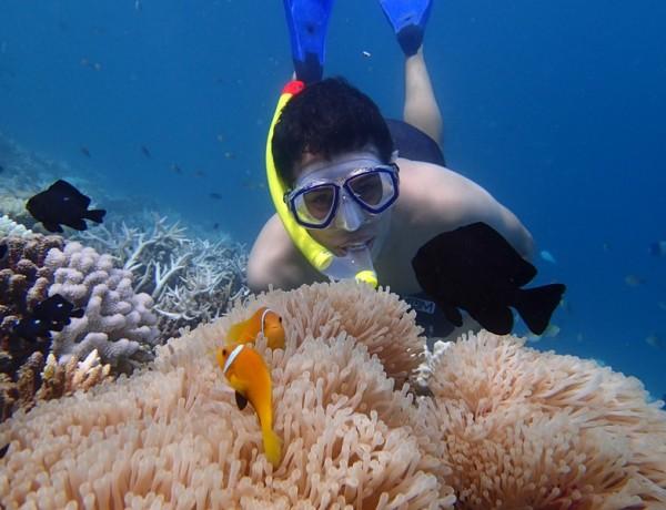 Um Mergulho nas Maldivas