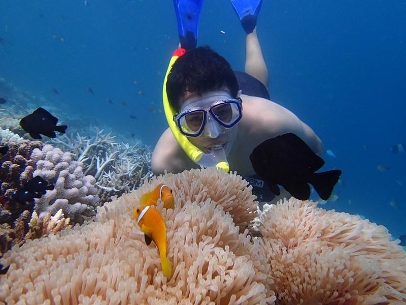 Mergulhando nas Maldivas