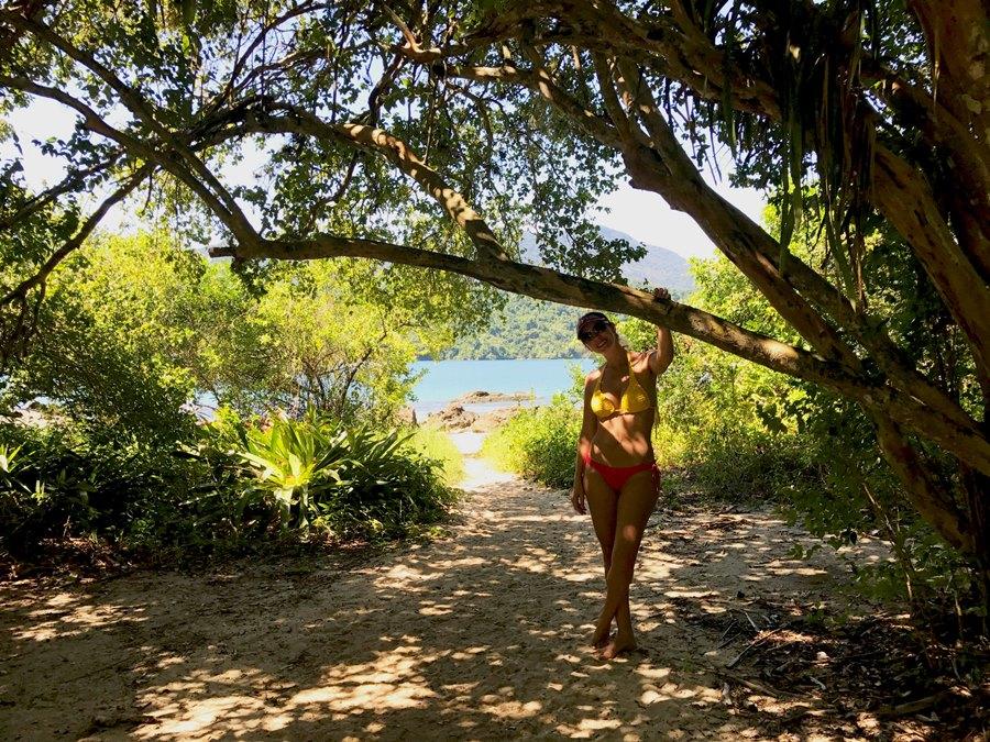 Ilha da Cotia trilha